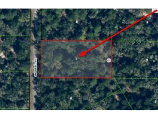 9931 N Snowball Pt  , Crystal River, FL 34428 (MLS #717450) :: Plantation Realty Inc.