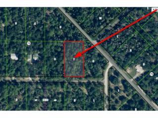 11687 W Caladium St  , Crystal River, FL 34428 (MLS #717451) :: Plantation Realty Inc.