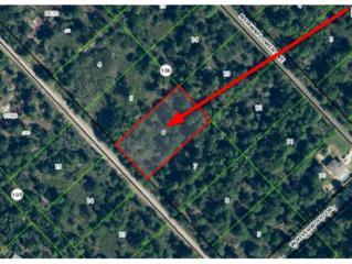 11833 W Flaxen Dr  , Crystal River, FL 34428 (MLS #717452) :: Plantation Realty Inc.