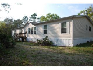 6703 W Macopin Ln  , Crystal River, FL 34429 (MLS #717474) :: Plantation Realty Inc.