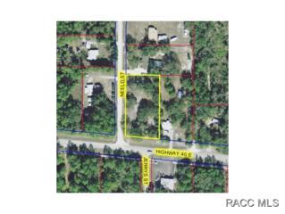 0  Hwy. 40  , Inglis, FL 34447 (MLS #717936) :: Plantation Realty Inc.