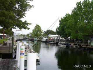 2581 N Seneca Pt  , Crystal River, FL 34429 (MLS #717973) :: Plantation Realty Inc.