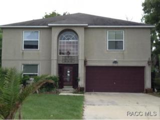 5780 SW 116 Place Road  , Ocala, FL 34476 (MLS #718064) :: Plantation Realty Inc.