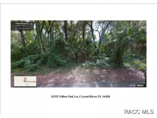 11252 W Yellow Oak Ln W , Crystal River, FL 34428 (MLS #718092) :: Plantation Realty Inc.