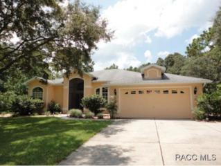 57  Corkwood Blvd.  , Homosassa, FL 34446 (MLS #718112) :: Plantation Realty Inc.