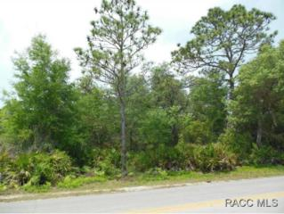 7931 W Delta Ct  , Crystal River, FL 34428 (MLS #718116) :: Plantation Realty Inc.