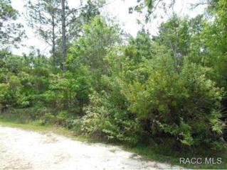 7934 W Delta Ct  , Crystal River, FL 34428 (MLS #718117) :: Plantation Realty Inc.