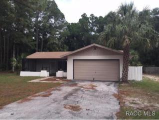 4251 N Concord Dr.  , Crystal River, FL 34428 (MLS #718127) :: Plantation Realty Inc.