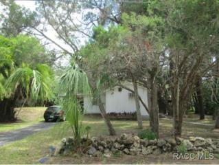 14415 W Ebbtide Ct  , Crystal River, FL 34429 (MLS #718301) :: Plantation Realty Inc.