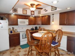 9787 E Goldfinch Ln  , Inverness, FL 34450 (MLS #718402) :: Plantation Realty Inc.