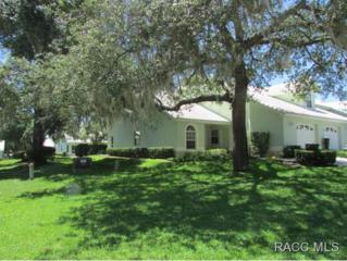 816  Inverie Dr  , Inverness, FL 34453 (MLS #718438) :: Plantation Realty Inc.