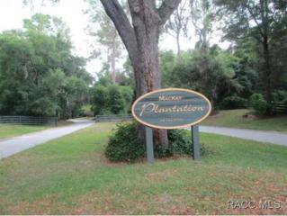 10349 N Big Bass Trl  , Dunnellon, FL 34434 (MLS #718527) :: Plantation Realty Inc.