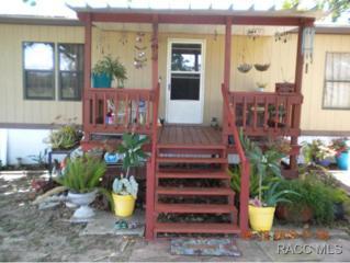 5132 S Ridgely Pt  , Lecanto, FL 34461 (MLS #718594) :: Plantation Realty Inc.