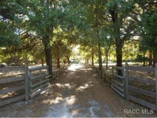 10388 N Dapple Ter  , Crystal River, FL 34428 (MLS #718698) :: Plantation Realty Inc.