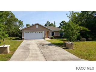 2435 W Lawrence Ct  , Citrus Springs, FL 34434 (MLS #718737) :: Plantation Realty Inc.