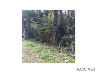 0 NW 1st Ave  , Crystal River, FL 34428 (MLS #718773) :: Plantation Realty Inc.