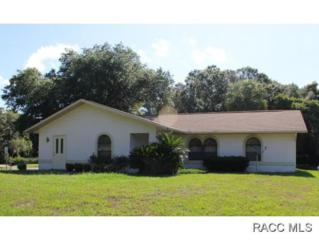 9478 W Marquette Ln  , Crystal River, FL 34428 (MLS #718839) :: Plantation Realty Inc.