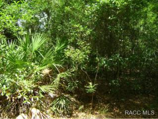 9671 W Artichoke Pl.  , Crystal River, FL 34428 (MLS #718842) :: Plantation Realty Inc.