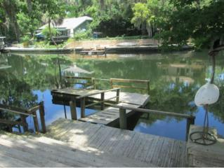 13185 W Foss Groves  , Inglis, FL 34449 (MLS #703648) :: Plantation Realty Inc.