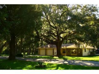 8  Palm Circle Dr  , Inglis, FL 34449 (MLS #713687) :: Plantation Realty Inc.