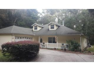 3845 N Calumet Terrace  , Hernando, FL 34442 (MLS #713856) :: Plantation Realty Inc.