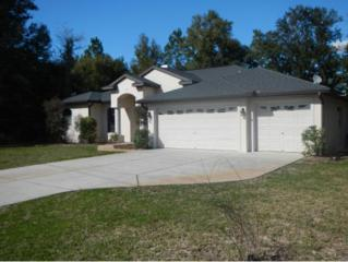 9353 W Hugh Barco Ct  , Crystal River, FL 34428 (MLS #714980) :: Plantation Realty Inc.