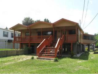 14336 W Seashell Ct  , Crystal River, FL 34429 (MLS #715331) :: Plantation Realty Inc.