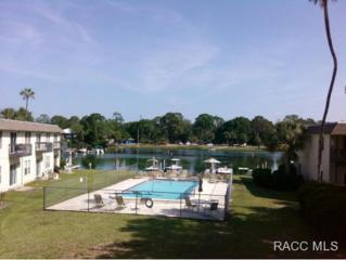 30 SE Valare Ln  , Crystal River, FL 34429 (MLS #718401) :: Plantation Realty Inc.