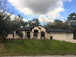 9353 W Hugh Barco Ct  , Crystal River, FL 34428 (MLS #714980) :: Plantation Realty Inc.