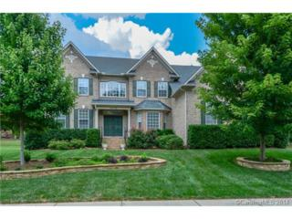 10715  Honeynut Drive  , Charlotte, NC 28277 (#3022282) :: Puma & Associates Realty Inc.
