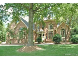 20316  Christofle Drive  , Cornelius, NC 28031 (#3024124) :: Puma & Associates Realty Inc.