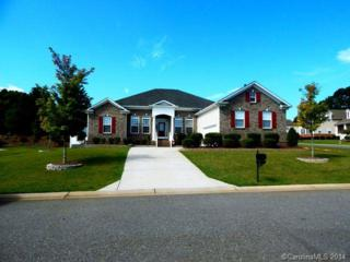 2106  Chickasaw Loop  , Rock Hill, SC 29732 (#3035699) :: Leigh Brown and Associates with RE/MAX Executive Realty