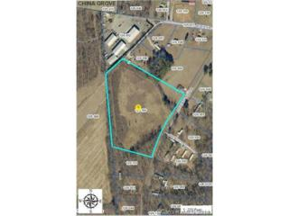 0  Brookwood Drive  , China Grove, NC 28023 (#3036794) :: MartinGroup Properties