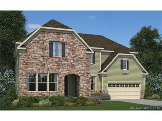1715  Sutter Creek Drive  Lot 254, Waxhaw, NC 28173 (#3043125) :: The Rock Group