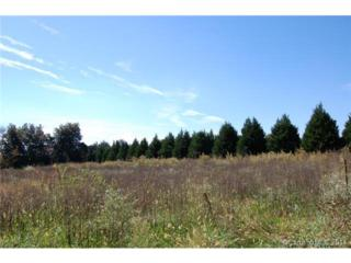 Tract # 2  Beason Drive  , Lincolnton, NC 28092 (#3045006) :: Charlotte Area Homes Online