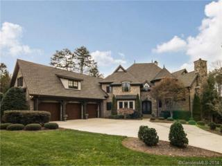 12725  Ninebark Trail  , Charlotte, NC 28278 (#3051429) :: Puma & Associates Realty Inc.