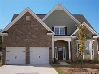 4520  Carrington Drive  270, Lancaster, SC 29720 (#3053515) :: The Ann Rudd Group