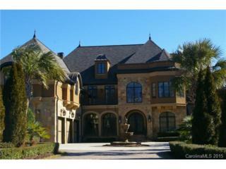 9601  Gato Del Sol Court  243, Waxhaw, NC 28173 (#3060224) :: Pridemore Properties