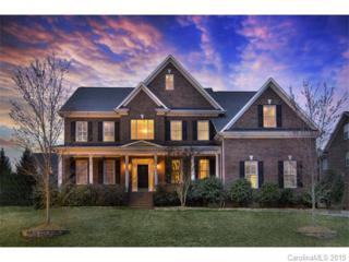 10028  Allyson Park Drive  , Charlotte, NC 28277 (#3070877) :: Pridemore Properties