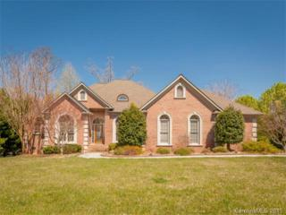 9216  Hollybush Lane  , Charlotte, NC 28277 (#3072387) :: Leigh Brown and Associates with RE/MAX Executive Realty