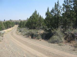 20958 SE Eagle View Road  , Prineville, OR 97754 (MLS #201104445) :: Birtola Garmyn High Desert Realty