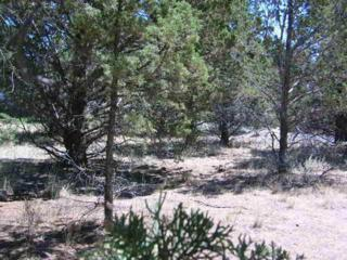 0 NW Nye Ave  Tbd, Prineville, OR 97754 (MLS #201307655) :: Birtola Garmyn High Desert Realty