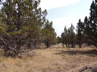 6126 NW Foster St  , Prineville, OR 97754 (MLS #201308464) :: Birtola Garmyn High Desert Realty