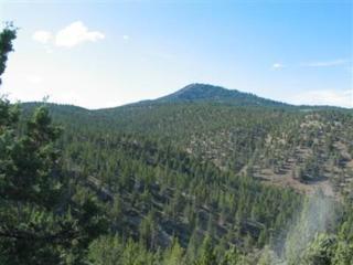 23788 SE Sjostrome Road  , Prineville, OR 97754 (MLS #201308498) :: Birtola Garmyn High Desert Realty