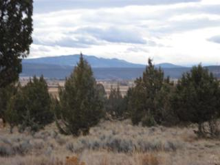 0 NW Lots 4 & 25 Elliott St  Tbd, Prineville, OR 97754 (MLS #201400141) :: Birtola Garmyn High Desert Realty