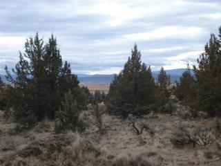 0 NW Lots 7 & 8 Elliott St  Tbd, Prineville, OR 97754 (MLS #201400143) :: Birtola Garmyn High Desert Realty