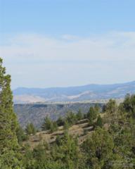0 SE Sjostrome  Lt100, Prineville, OR 97754 (MLS #201408517) :: Birtola Garmyn High Desert Realty