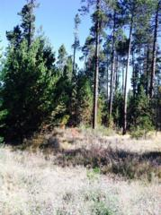 17208  Pintail  , Bend, OR 97707 (MLS #201408558) :: Fred Real Estate Group of Central Oregon