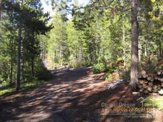 9  Clear Spring Way  , Crescent Lake, OR 97733 (MLS #201504873) :: Fred Real Estate Group of Central Oregon