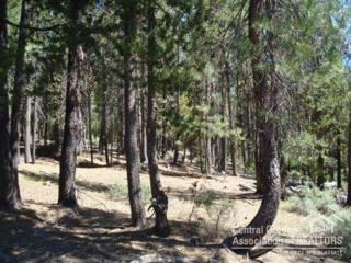 5  Blue Sky Way  , Crescent Lake, OR 97733 (MLS #201504874) :: Fred Real Estate Group of Central Oregon